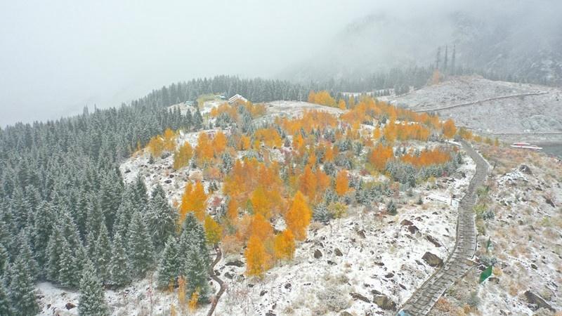 天山天池:白雪覆景区 五彩衬天池