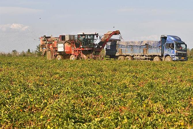 """播""""智慧""""种 结丰收果——新疆发展智慧农业促一产上水平"""