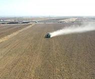 额敏:冬小麦播种忙